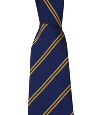 TIE-35-POL - School stripe tie - Dark royal/gold - 45L