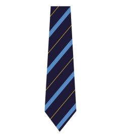 NKT-30-POL - clip on tie - Navy/sky/gold